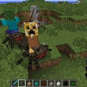 Special_Mobs_02