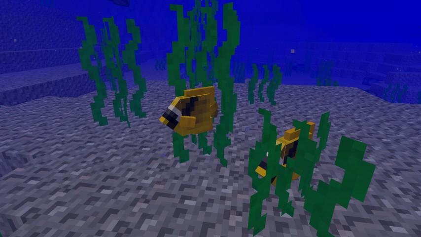 aquatic_22