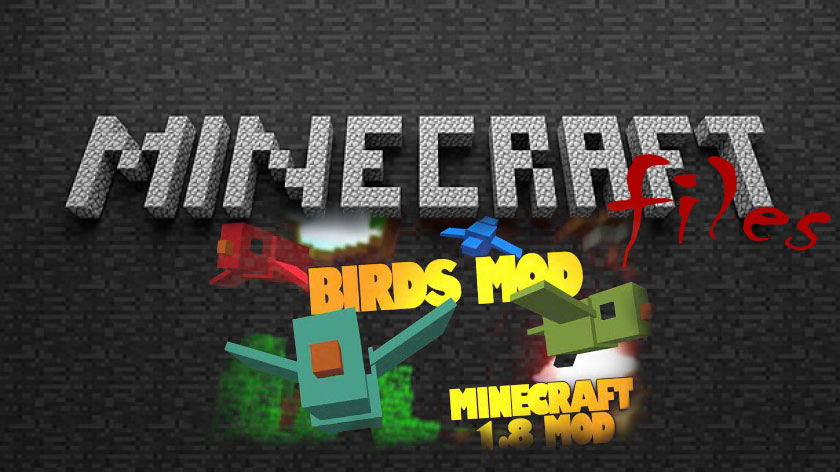 Birds - птицы