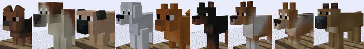 copious_dogs_10